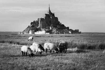Bretagne nord-55