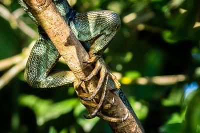 03 - Costa Rica