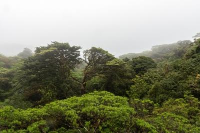 Santa Elena-04